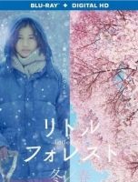 BD25-2D 13 小森林:春夏秋冬篇/小森食光2碟  LITTLE FOREST: WINTER & SPRING (2015)  豆瓣评分8.1